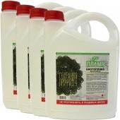 Биотопливо ЭКО Пламя 20 литров (4 канистры по 5 литров)