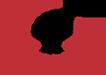 Логотип Skamol